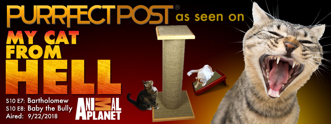 Check out the Purrfect Post as seen on My Cat From Hell - Aired 9/22/18