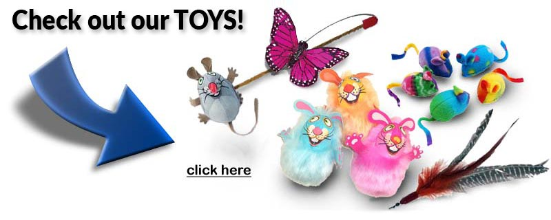 Check out our selection of toys too!