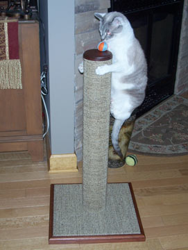 Cats need a sturdy post that won't wobble or fall